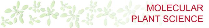 Molecular Plant Science - RG Wachter | ImP